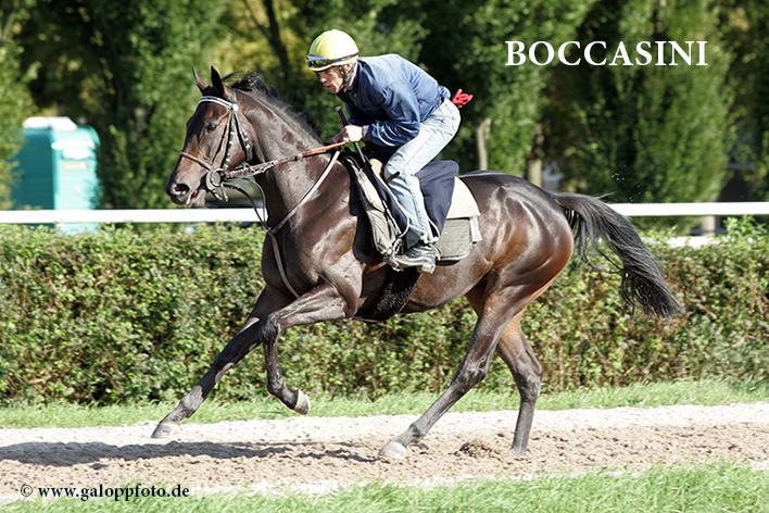 Iffezheim - Boccassini mit Frederic Chedotal beim Training